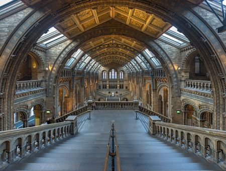 634px-natural_history_museum_main_hall2c_london2c_uk_-_diliff